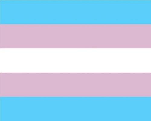 Bandeira do Orgulho Transgênero.