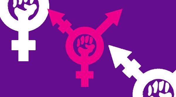 Símbolo do Transfeminismo.