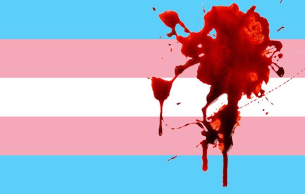Bandeira do orgulho trans.